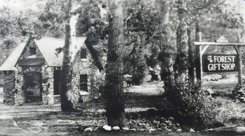 Historic Photo Of The Forest Gift Shop