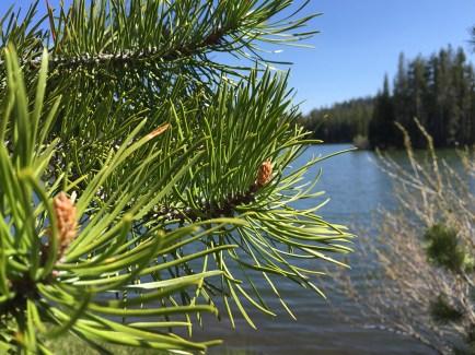 Easy Hiking At Serene Lakes California