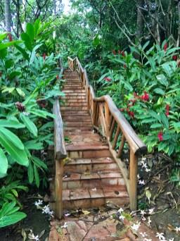 Grand Wailea Path