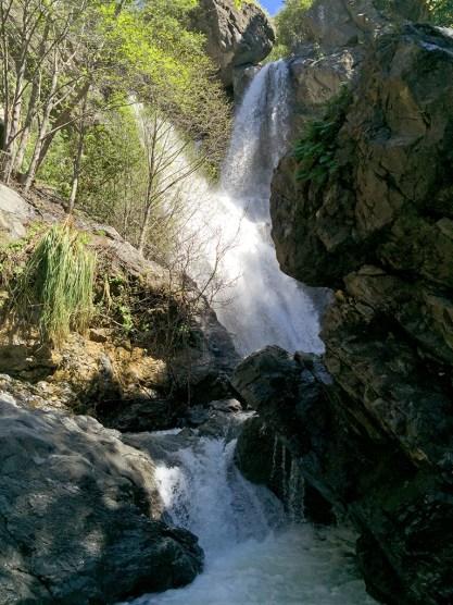 Hiking The Salmon Creek Falls Trail