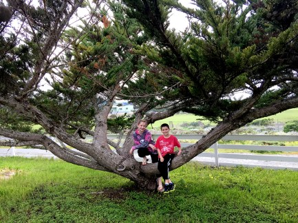 Family Travel Visit to Boat Anchor Salvaged at Point Pinos Lighthouse