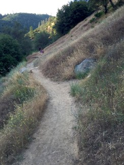 Hiking With Kids in Northern California