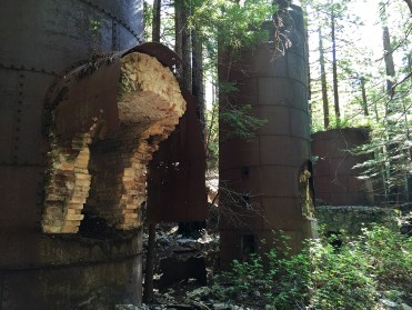 Lime Kilns and Lime Smelting Remains at Limekiln State Park in California
