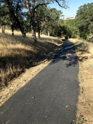 Looking Down Steep Foothills Trail Rocklin California