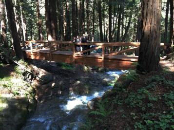 Scenic Bridges Over Lime Kiln Creek