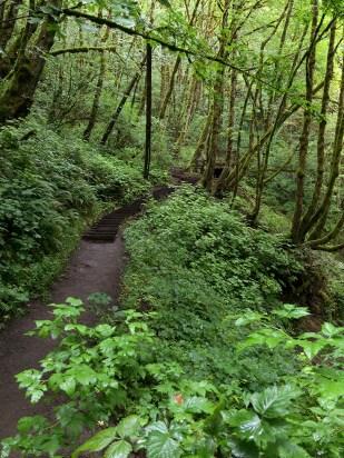Bridal Veil Falls Hiking Trail to Waterfall