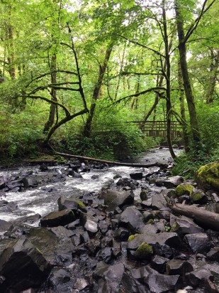 Bridal Veil Falls State Park and Bridal Veil Creek