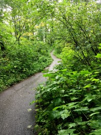 Hiking The Bridal Veil Falls Trail