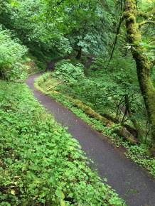 Hiking The Wahkeena Falls Trail In oregon