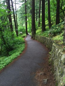 Hiking The Wahkeena Falls Trail