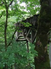 Latourell Creek Bridge on the Historic Columbia River Highway