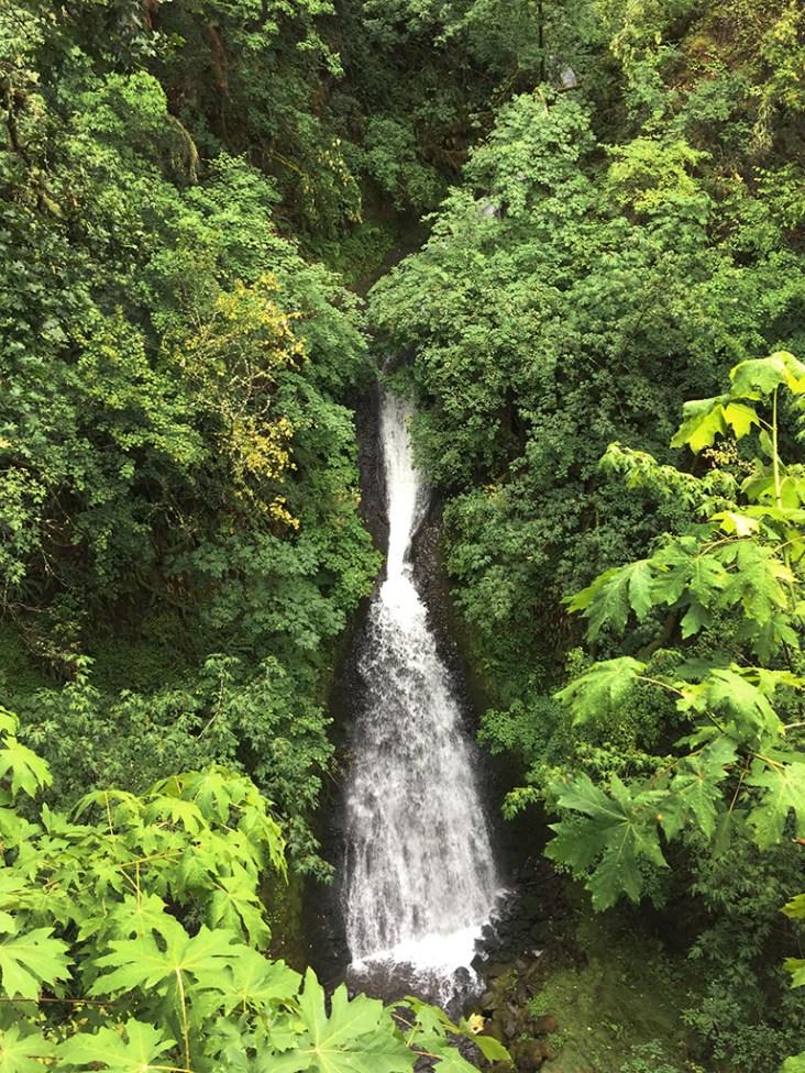 Shepperd's Dell Waterfall in Oregon