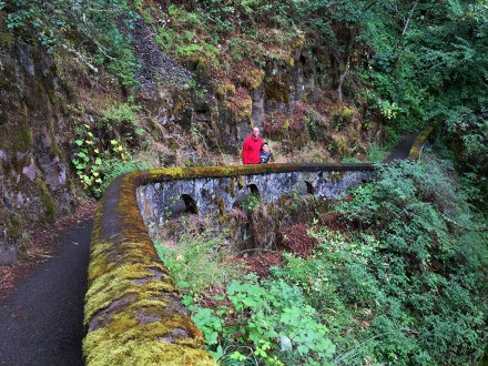 Shepperd's Dell is a small canyon in the Columbia River Gorge in Oregon
