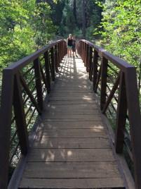 Beaver Creek Memorial Bridge on the South Grove Trail