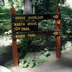 Calaveras Big Trees State Park Trail Signs