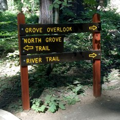 Calaveras Big Trees State Park Trail Signs