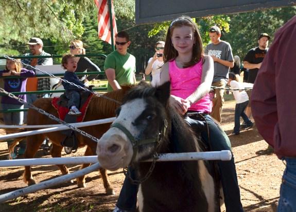 Apple Hill Pony Rides