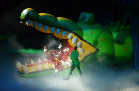 Captain Hook and Peter Pan