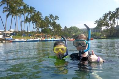 Snorkeling at the Hilton Waikoloa Village Lagoon