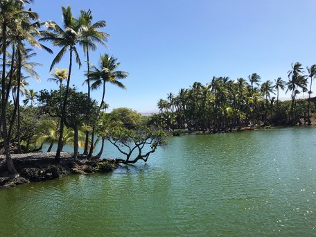 Hawaiian Fish Ponds at Kalahuipua'a Historic Park in Hawaii
