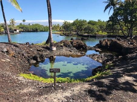 Kalahuipua'a Historic Park Fish Ponds at Mauna Lani Bay Hotel