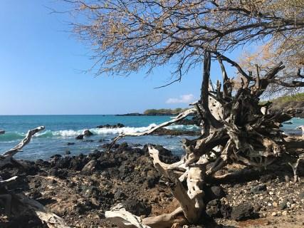 Waialea Bay on the Kohala Coast of Hawaii