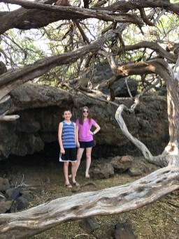 Malama Trail Puako Petroglyphs