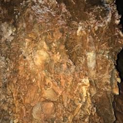 Soda STraws Cavern Rock Formations