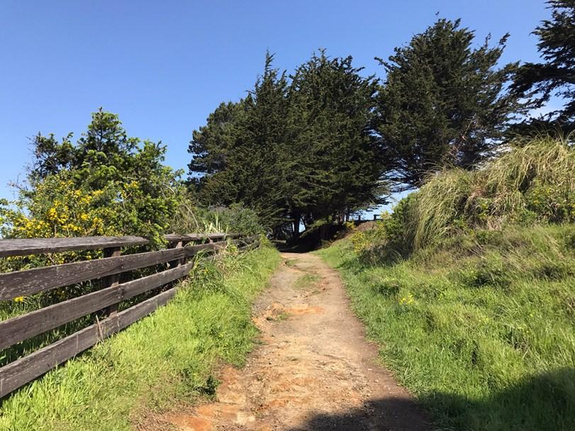 Greenwood State Beach Trail in Elk, California