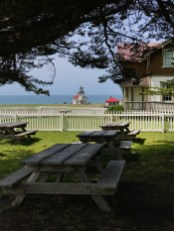 Shady Picnic Area At The Point Cabrillo Lighthouse Cottages