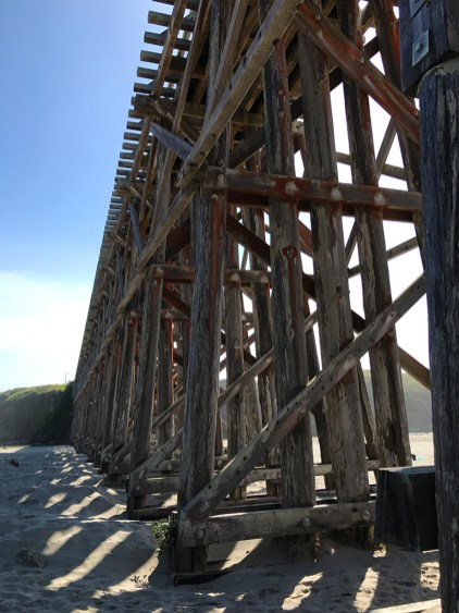 Underneath the Pudding Creek Trestle