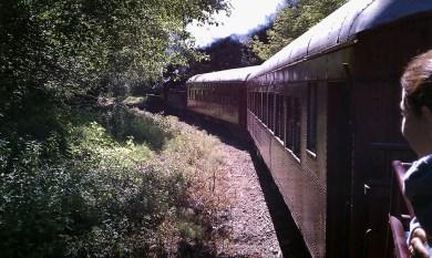 California Skunk Train in 2010