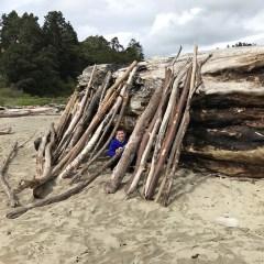 Big River Beach Driftwood Forts