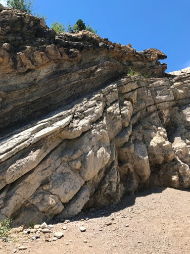 Rock Formation at Dinosaur Ridge