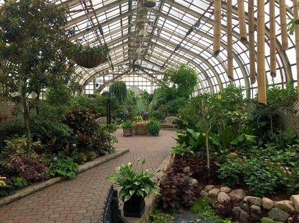 Lincoln Park Conservatory Flowers