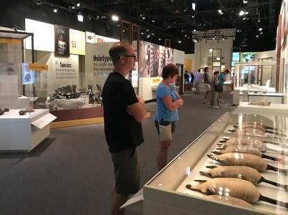 Specimens Museum Exhibit
