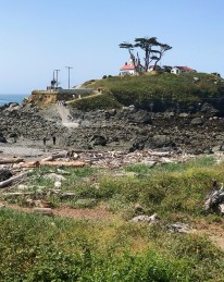 Battery Point Lighthouse During Low Tide