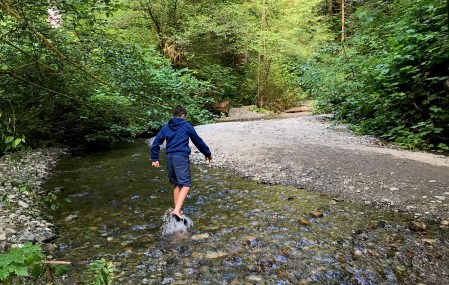 Carter Crossing The Creek