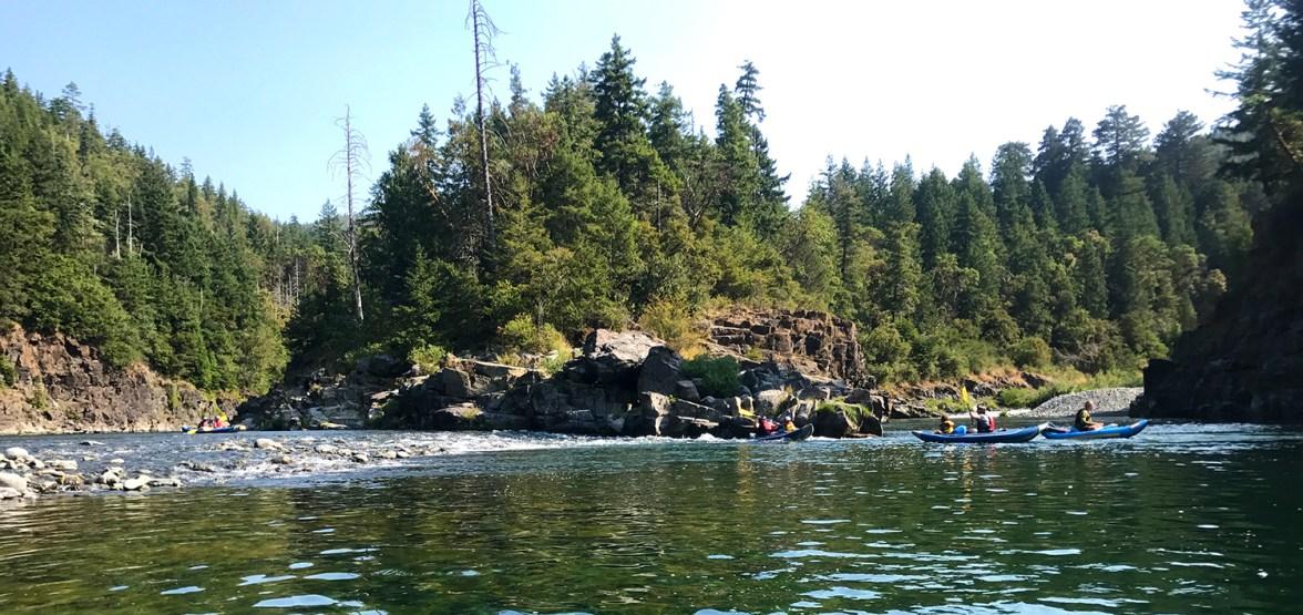 Redwood Rides Guided Kayaking Trip
