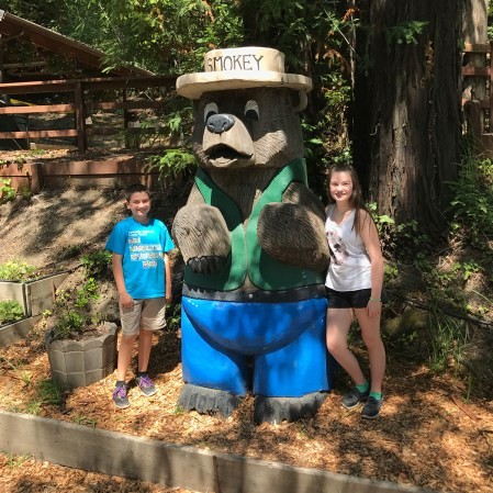 Smokey The Bear Redwood Statue