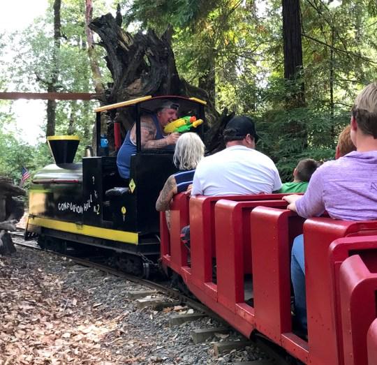 Confusion Hill Train