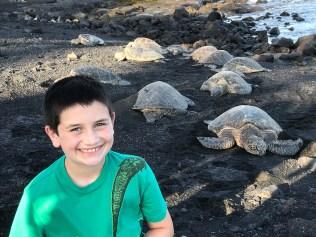 Carter Bourn close to Huge Sea Turtles in Hawaii