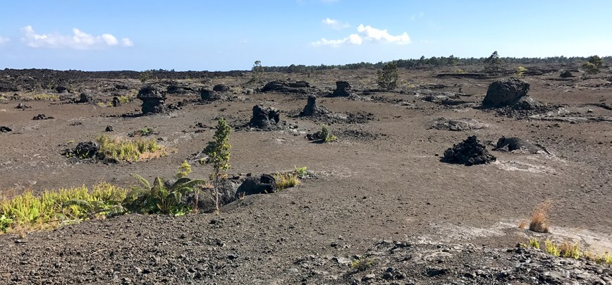 Mauna Ulu Eruption Site