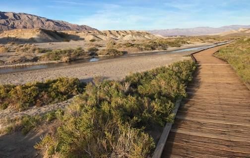 Salt Creek Interpretive Trail in Death Valley National park