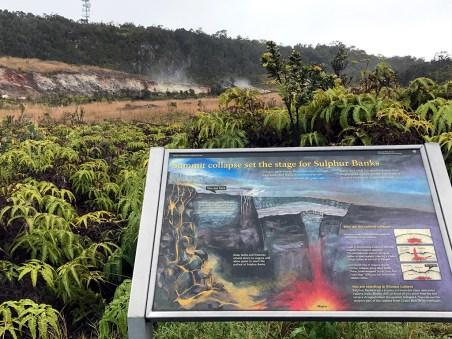 Sulfur Banks Trail Interpretive Sign