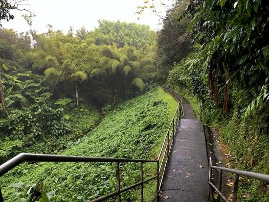 Waterfall Hike on the Big Island of Hawaii