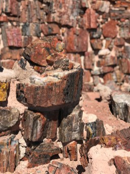 Building Walls With Petrified Wood