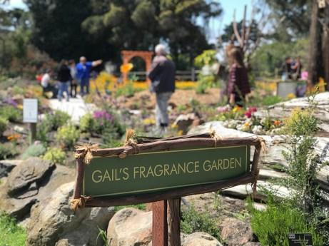 Gail's Fragrance Garden