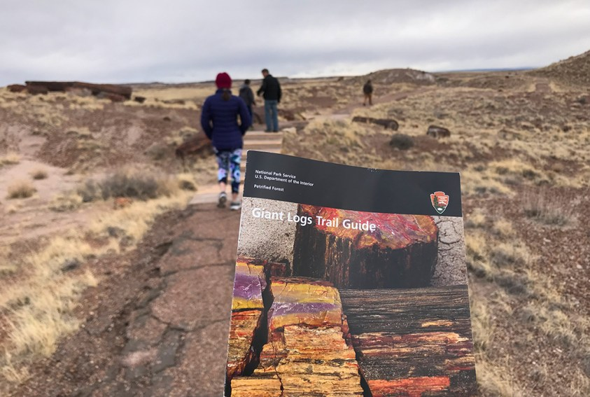 Petrified Forest National Park Giant Logs Trail Guide