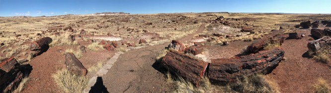 Petrified Forest National Park Long Logs Trail Panorama